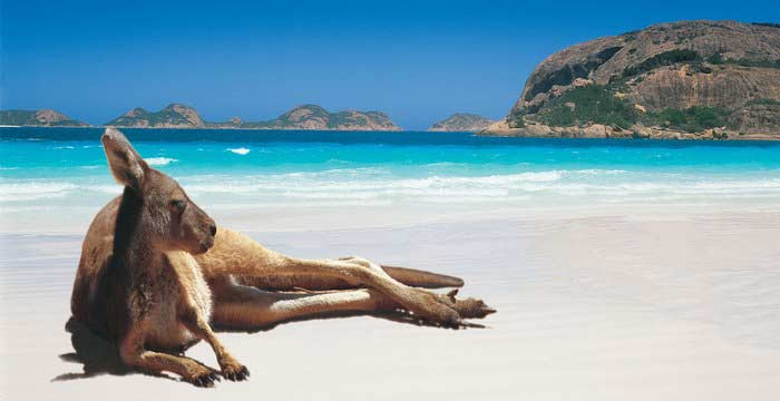 Discover Australia: Reasons to Visit the Country