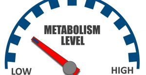 Can You Hack Your Metabolism to Lose More Weight