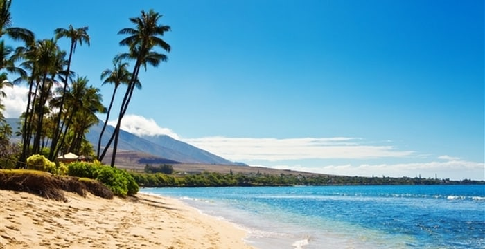 Kamilo Beach Hawaii